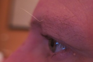 Crazy Eyebrow Hair!