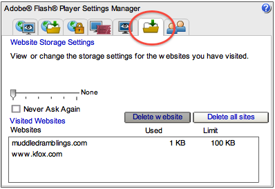 Flash Web Storage Settings Panel