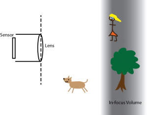 Figure 1: diagram of a photo shoot in a park. The girl and the tree are in focus.