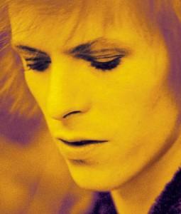 Ziggy-Stardust-ziggy-stardust-8526918-497-584